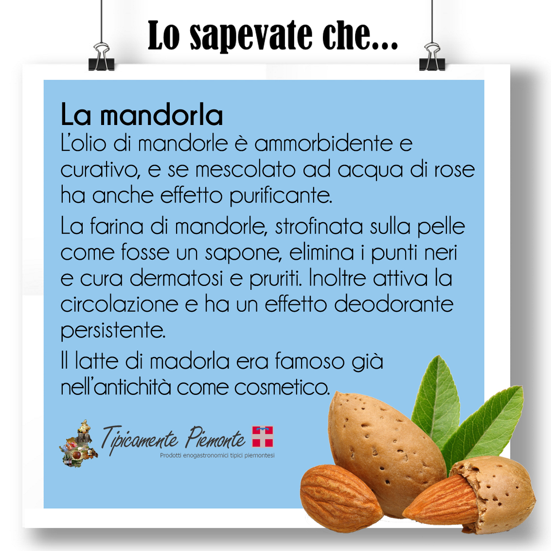 losapevateche_lamandorla
